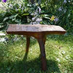 tree branch stool cropped